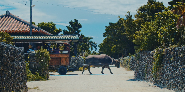 沖縄観光をリデザインするWEBサイト