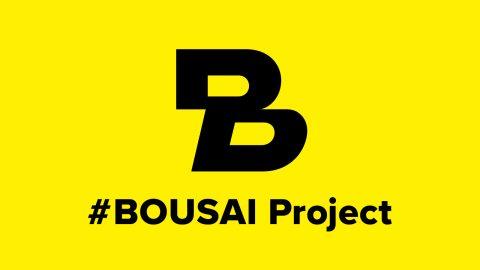 BOUSAI Project